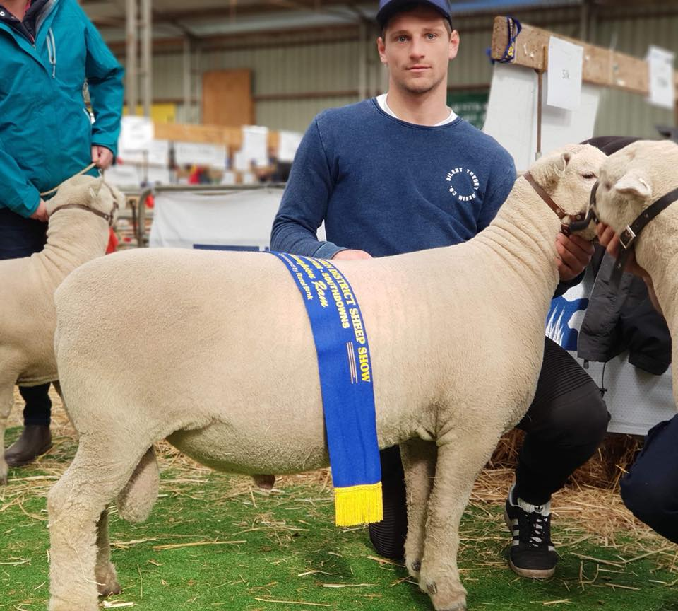Champion Ram, Sheepvention 2018